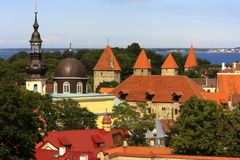 Tallinn, эстония Стоковые Фото