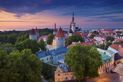 tallinn Photographie stock