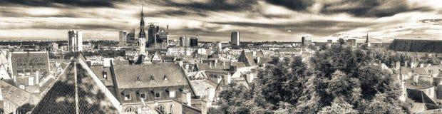 Tallinn aerial view from Toompea, Estonia.  Royalty Free Stock Image