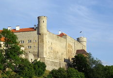 Tallinn. Alte Stadt. Lizenzfreie Stockfotografie