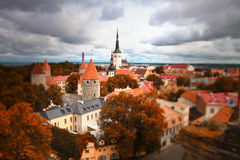 Tallinn autumn tilt-shift Stock Image