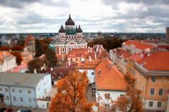Tallinn autumn tilt-shift Royalty Free Stock Photos
