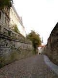 Tallinn in autunno Immagini Stock Libere da Diritti