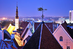 Tallinn bij nacht royalty-vrije stock fotografie
