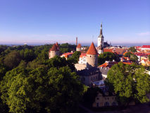 Tallinn, the capital of Estonia. The view from the old upper city to the red roofs of an old town. Royalty Free Stock Photography