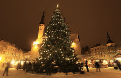 Tallinn Christmas market with chirstmas tree. Tallinn Christmas market held on the the Town Hall Square in Tallinn Stock Photos