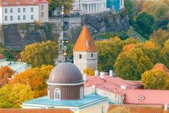 Tallinn Cidade velha Imagens de Stock
