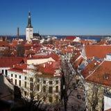 Tallinn Città Vecchia sulla collina di Toompea, Estonia, vista panoramica con i tetti di mattonelle rosse tradizionali, le chiese Fotografie Stock