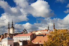 Tallinn city street in autumn Stock Images