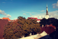 Tallinn city street in autumn Stock Photography