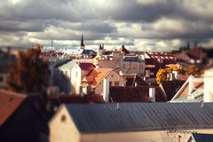 Tallinn city street in autumn tilt-shift Stock Image