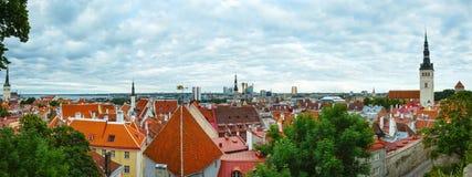 Tallinn City summer panorama. Stock Images