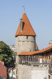 Tallinn City Wall Tower. Estonia,Autumn 2014 Royalty Free Stock Image