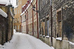 Tallinn in de winter Stock Foto