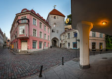 Tallinn Down Town and Tower Gate to the Upper Town, Tallinn Royalty Free Stock Photography