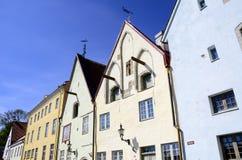 Tallinn Estónia Fotografia de Stock Royalty Free