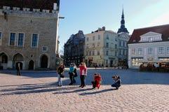 Tallinn, Estônia, 05/02/2017 dos fotógrafo na praça da cidade fotos de stock