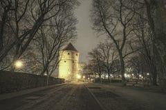 Tallinn, Estônia Imagem de Stock
