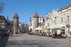 Tallinn. Estland stock afbeeldingen