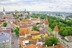 Tallinn Estland Arkivfoto