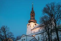 Tallinn, Estland Abend-Ansicht der Kathedrale des Heiligen Mary Virgin Stockfoto