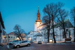 Tallinn, Estland Abend-Ansicht der Kathedrale des Heiligen Mary Virgin Lizenzfreie Stockfotografie