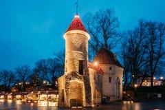 Tallinn, Estland Berühmtes Markstein Viru-Tor in der Straßenbeleuchtung an der Abend-oder Nachtbeleuchtung Lizenzfreies Stockbild