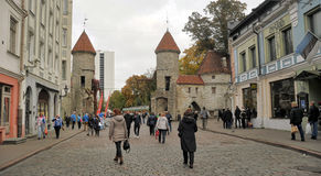 Tallinn, Estland de ingang van de Poort Viru Stock Afbeelding