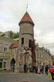 Tallinn, Estland de ingang van de Poort Viru Stock Fotografie