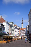 Tallinn Estland, gata av den gamla staden med ljusa hus och en stadshusgrov spik Arkivbild
