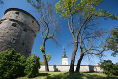 Tallinn Estland Hoofdeesti Stock Afbeelding