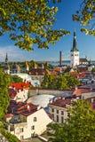 Tallinn Estland horisont Royaltyfri Foto