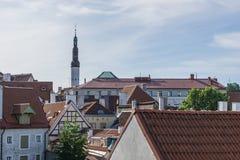 Tallinn Estland - Juli 06, 2016: Gator, hus och tak av Tallinn i sommardagen Arkivfoto