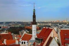 Tallinn Estland kan, 05, 2014 - panorama Fotografering för Bildbyråer