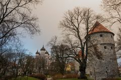 Tallinn, Estland: Kiek in DE Kok Museum en Bastiontunnels in middeleeuwse verdedigings de stadsmuur van Tallinn Weergeven van Ale stock fotografie