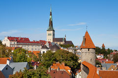 Tallinn. Estonia Royalty Free Stock Image