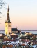 Tallinn estonia Obraz Royalty Free