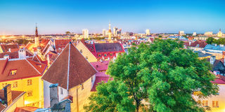 Tallinn, Estonia: aerial top view of the old town at night Stock Images