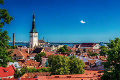 Tallinn, Estonia: aerial top view of the old town Stock Photography