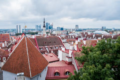 Tallinn, Estonia, Europa fotografie stock libere da diritti