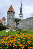 Tallinn, estonia, europe, along the old walls Stock Image
