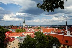 Old town Tallinn top view stock photography