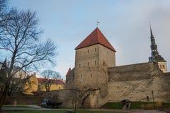 Tallinn, Estonia: Kiek in de Kok Museum e tunnel del bastione in muro di cinta difensivo medievale di Tallinn Luogo del patrimoni immagini stock libere da diritti