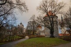 Tallinn, Estonia: Kiek in de Kok Museum e tunnel del bastione in muro di cinta difensivo medievale di Tallinn Punto di vista di A fotografia stock libera da diritti