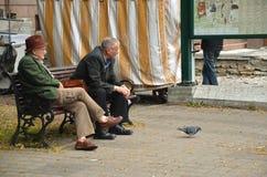 TALLINN/ESTONIA - 27 luglio 2013: Due pensionati di vecchiaia messi sul banco pubblico Fotografia Stock