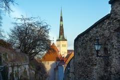 Tallinn, Estonia old city landscape Stock Photos
