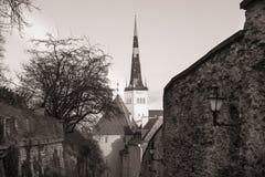 Tallinn, Estonia old city landscape Royalty Free Stock Photo