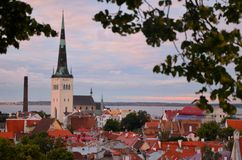 Tallinn Estonia Old Town Roofs at sunset Stock Photo