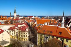 Tallinn, Estonia skyline view of Old Town. A viewpoint on Toompea Castle Hill in Tallinn, Estonia looks out across the red-tiled rooftops towards the harbor Stock Photo