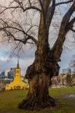 Tallinn, Estonia: St John kościół Tallinn w wolność kwadracie w starym miasteczku zdjęcia royalty free